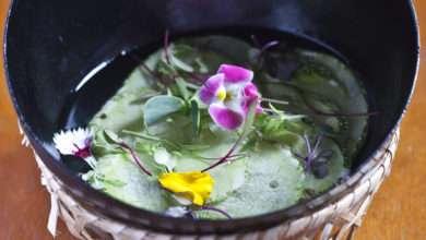 Photo of Abobrinhas marinadas em agridoce de capim-santo