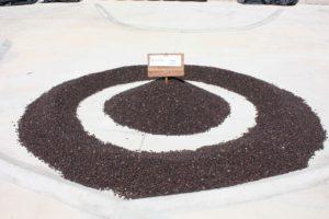 Um Coffee Co - Fazenda Um