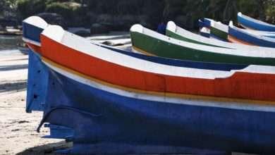 Photo of Festival do Camarão agita Ilhabela nesse mês