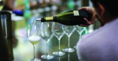 ABC do Vinho Por Enocultura
