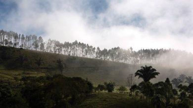 Photo of O vale dos orgânicos