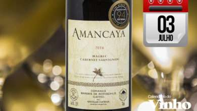 Photo of Catena e Lafite: Amancaya Reserva 2016