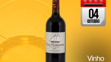 Photo of Beba um Bordeaux e sorria: Clos Floridene 2013