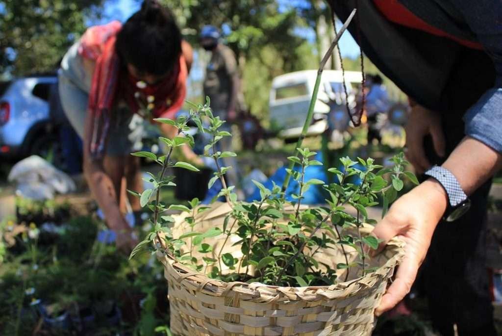 Fundação Vida Para Todos. Foto: Lizely Borges/ divulgação.