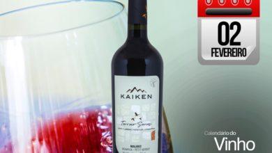 Photo of Corte interessante: Kaiken Terroir Series 2016