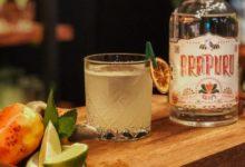 Photo of Concurso digital premiará bartenders profissionais. Saiba como participar