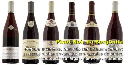 Photo of Pinot Noir da Borgonha