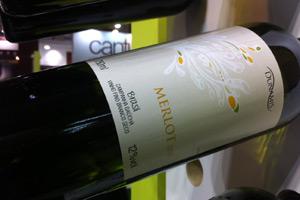 Photo of No estande da Dunamis, a atração são os vinhos da uva Merlot vinificados em branco